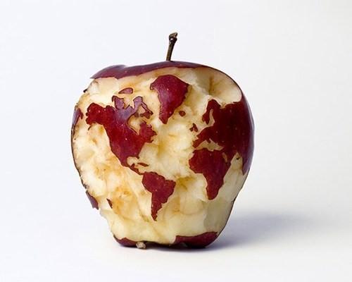 Spreco di Cibo, L'inchiesta con i dati della FAO